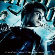 How To Install Harry Potter And The Half Blood Prince Game Without Errors