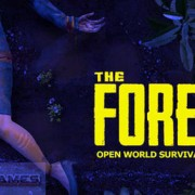 How To Install The Forest Game Without Errors
