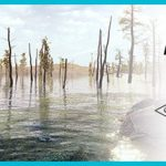 How To Install Fishing Sim World Lake Arnold Without Errors